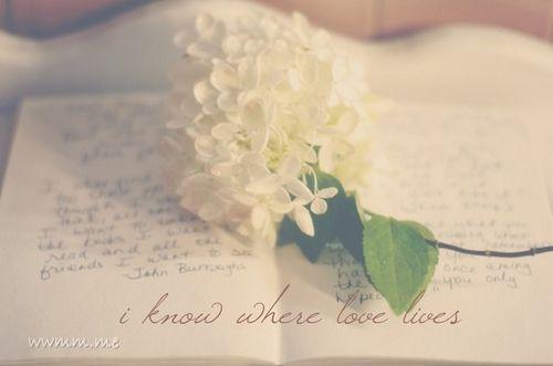 清明时节雨纷纷,落下回忆才懂爱