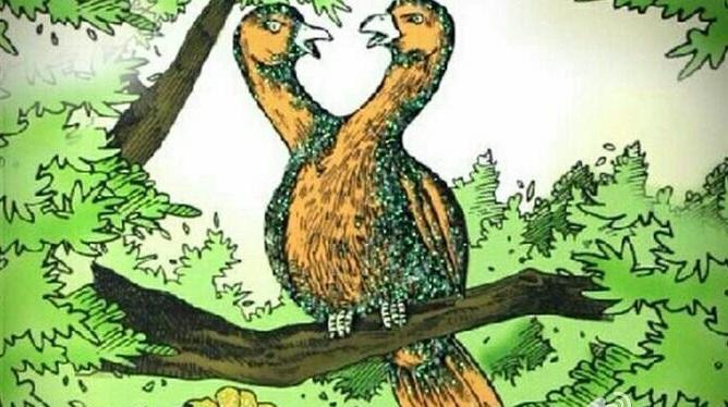 双头鸟的故事