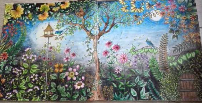 《秘密花园》读后感 400字